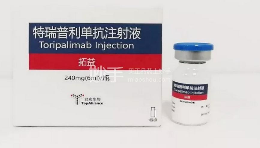 拓益 特瑞普利单抗注射液 240mg(6ml)/瓶*1